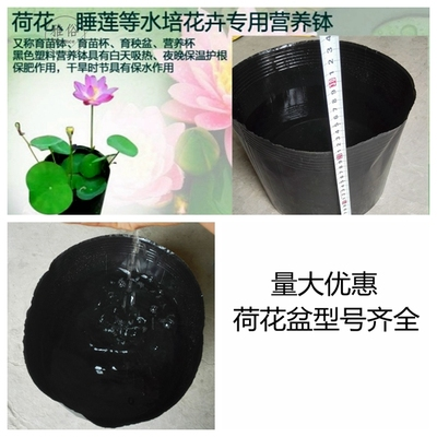 荷花营养钵塑料盆水生植物盆睡莲简约大盆不加厚盆荷花盆漏水杯