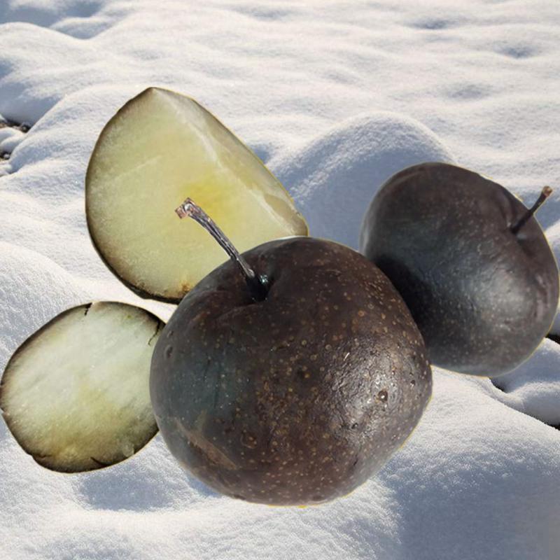 空运保温~东北水果冻梨苹果梨4斤