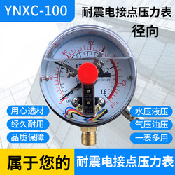Free shipping magnetically assisted seismic electric contact pressure gauge YNXC-100 0-1.6MPA/2.5/10/40/60MPA