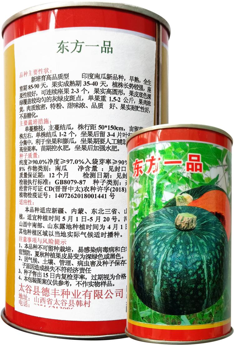 板栗味南瓜种籽香甜粉糯早熟绿皮春季菜种子甜栗大田四季蔬菜种孑详细照片