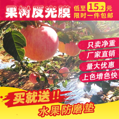 Fruit tree reflective film agriculture color fast apple coloring reflective film grape reflective film peach greenhouse temperature film