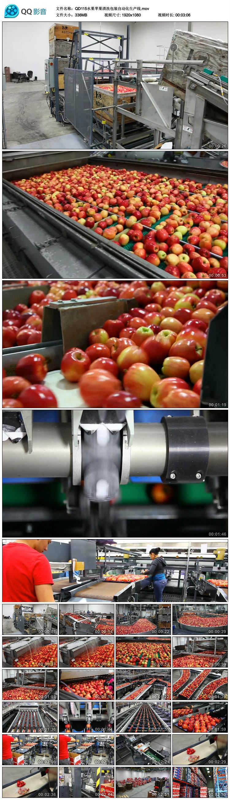 水果苹果清洗包装自动化生产线设备高清实拍视频素材