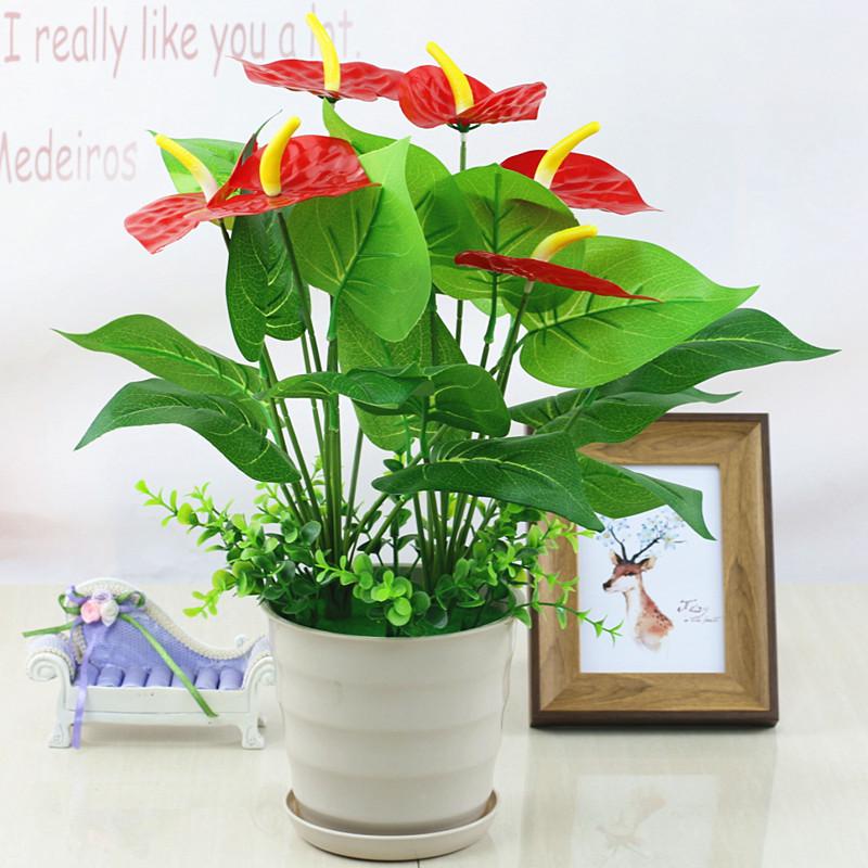 Mô phỏng hoa và cây Anthurium cây xanh hoa giả cây xanh thì là cây sàn vườn bonsai vườn hoa trang trí phòng khách bằng nhựa trang trí - Hoa nhân tạo / Cây / Trái cây