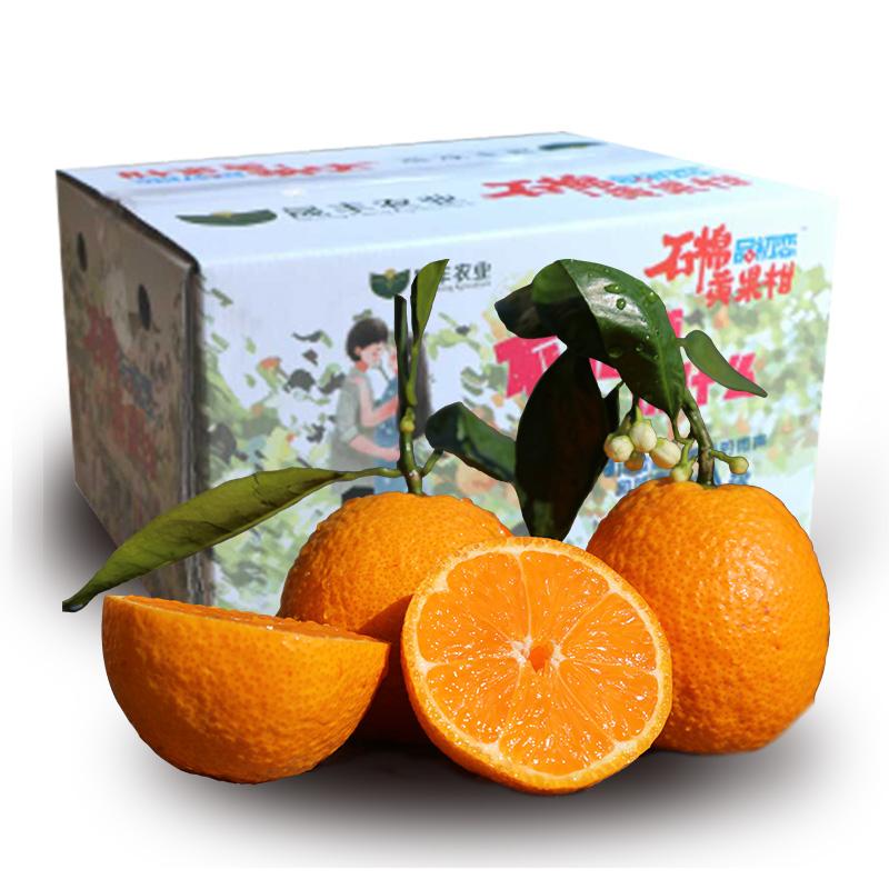 5斤【中大果】现摘现发四川石棉黄果柑橘