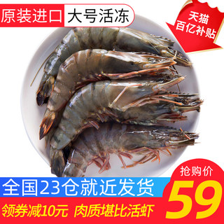 Vietnamese black tiger prawns imported prawns fresh super large fresh frozen porcino shrimp fresh sea shrimp quick frozen prawn tiger prawns
