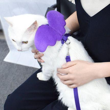 溜猫绳猫链子猫咪牵引绳防挣脱遛猫胸背带猫咪专用牵引项圈包邮