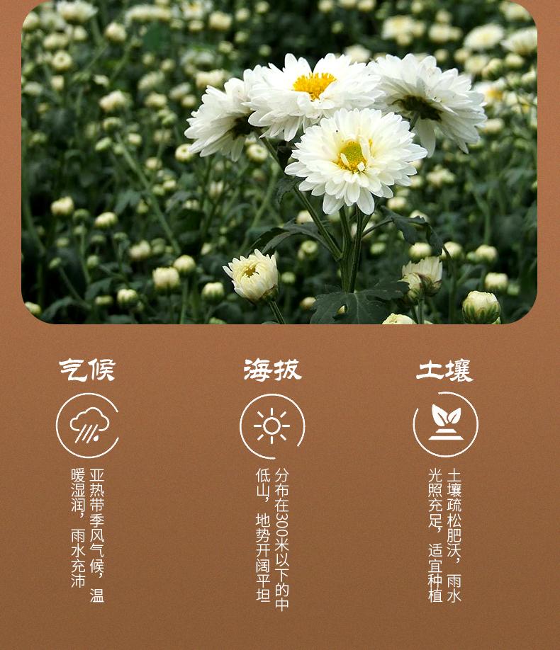 有禾 清热解毒杭白菊花茶 30g*2盒 图3