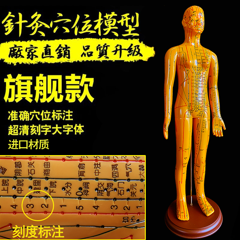 Flagship [digital Positioning] Copper Female Hard Mold 50cm Super Clear Super Word