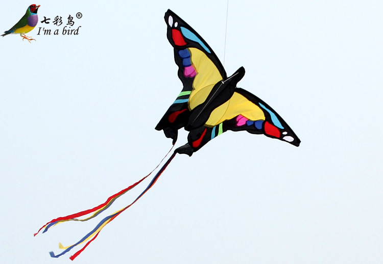 Colorful birds  Butterfly Kite