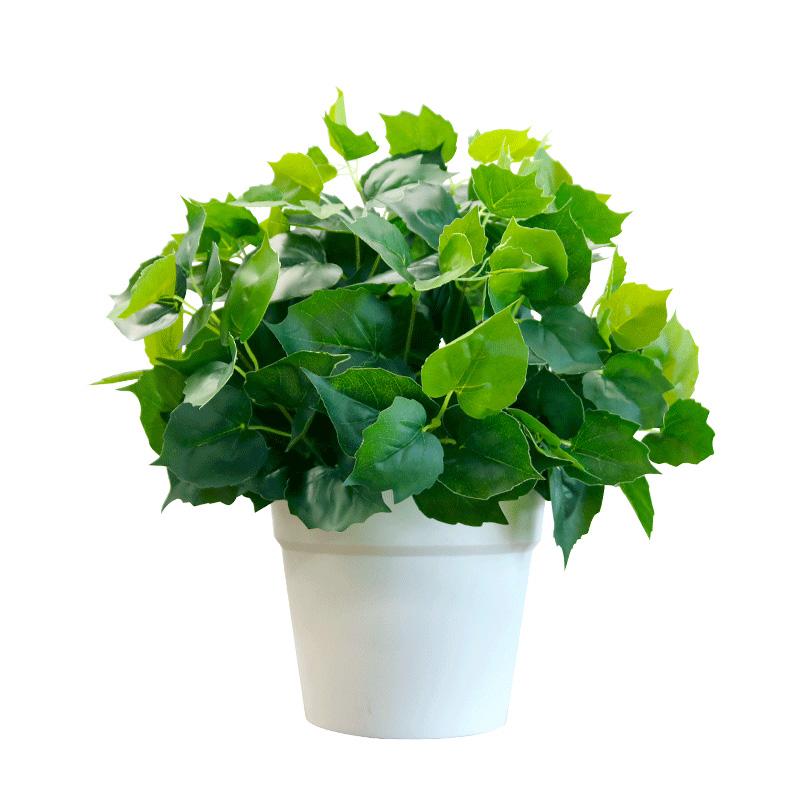 仿真植物塑料花草假绿萝叶万年青装饰绿植盆栽景客厅家居摆设摆件