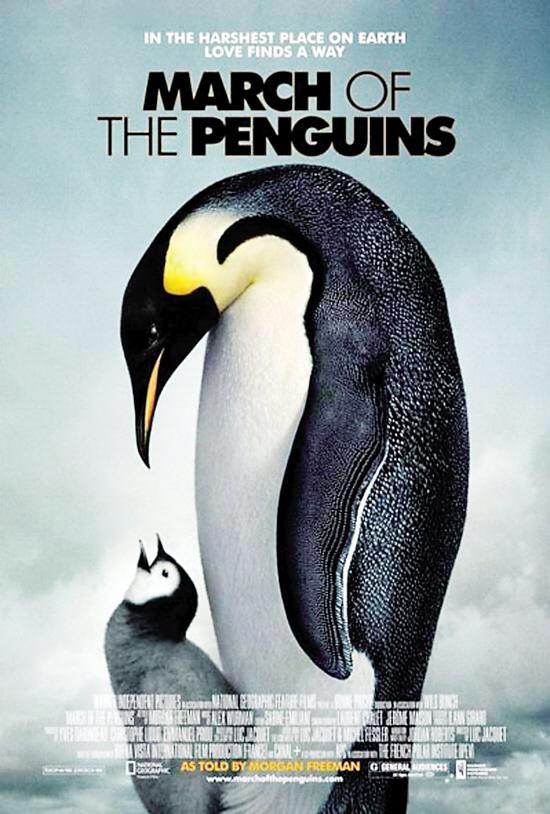 帝企鹅宝宝的生命轮回之旅 HD1080P 超清中英双字