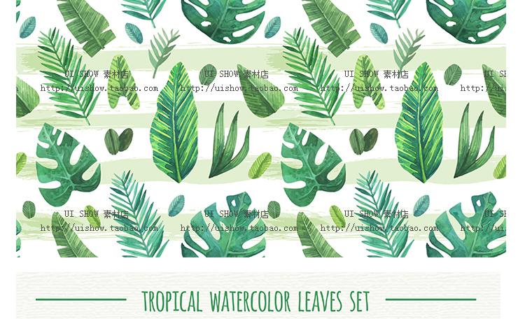 小清新水彩手绘树叶热带棕榈叶植物叶子插画背景海报矢量图片素材插图(44)