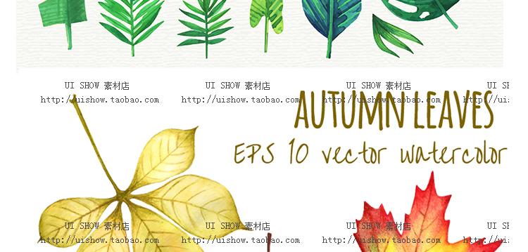 小清新水彩手绘树叶热带棕榈叶植物叶子插画背景海报矢量图片素材插图(46)