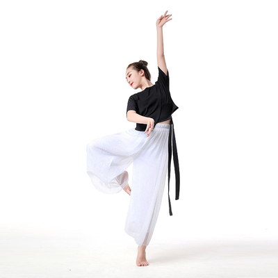 Short Ribbon Modern Dance Practice Gongfu Female Adult Classical Dance Dress Jazz National Dance Practice Gongfu Performance Clothing