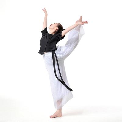 Classical Dance Dress Female Modern Dance Dress Ethnic Dance Dress Gongfu Dress Gongfu Trousers Elegant Chiffon Dance Trousers Broad-legged Trousers