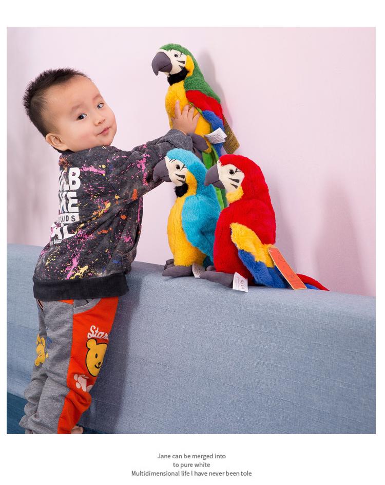 佈谷林~仿真鸚鵡公仔創意搞怪毛絨玩具可愛金剛小鳥玩偶擺件兒童生日禮物