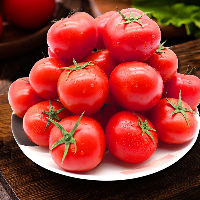 【雪梨推荐】透心红番茄新鲜西红柿孕妇水果蔬菜小番茄自然熟5斤
