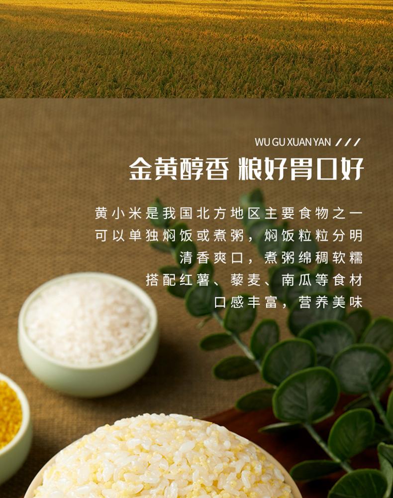 五谷宣言东北黄小米粥小黄米量贩斤装新米宝宝副食品杂粮详细照片