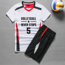 Quick-drying breathable volleyball Suit Suit men and women volleyball sportswear printing