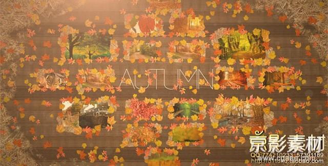 AE模板-深秋季节红叶背景图片展示片头 Autumn