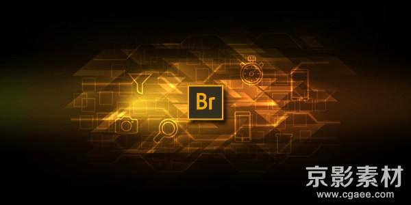 Adobe Bridge 2020 v10.0.1.126 Win/Mac 中文版/英文版