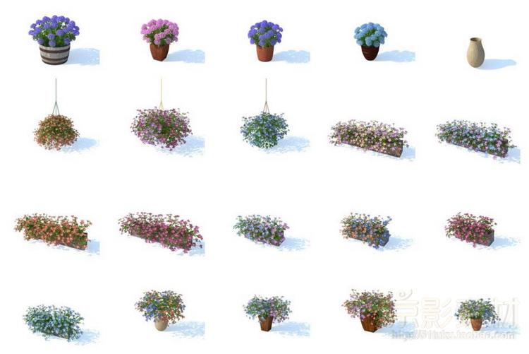 HD Flowers vol1+vol2+vol3 for Cinema4D-100多个漂亮花卉花草C4D模型Cinema 4D模型