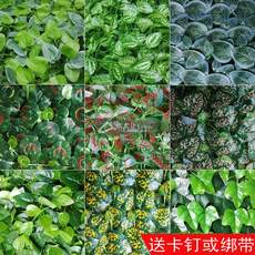 Indoor and outdoor background plant wall decoration fake lawn skin plastic simulation green plant tree leaf green dill wedding flower wall