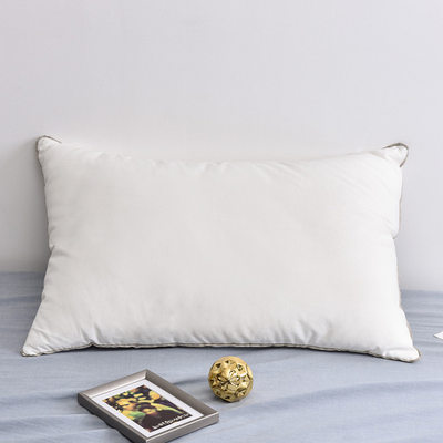 Nordic hit color five-star hotel cotton pillow slow rebound low pillow soft single feather velvet pillow 48*74