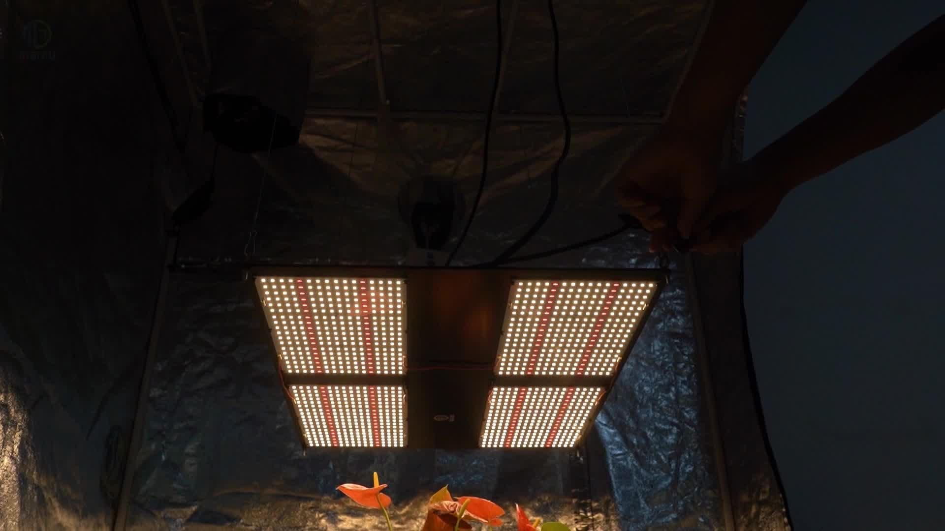 Meijiu 2020 QB288 480W Led Pcb Boards Grow Light, Shenzhen Hot Seller FoMex qbv2 Lm301b Medical Plant Grow Light