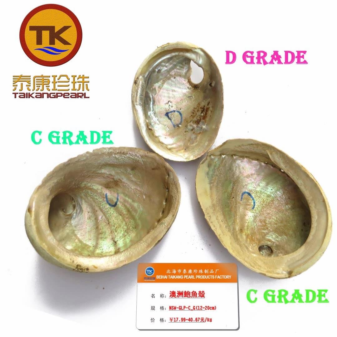 进口澳洲鲍鱼贝壳大全 ALL-GLP+BLP_大鲍鱼壳烟熏盘 大贝壳批发