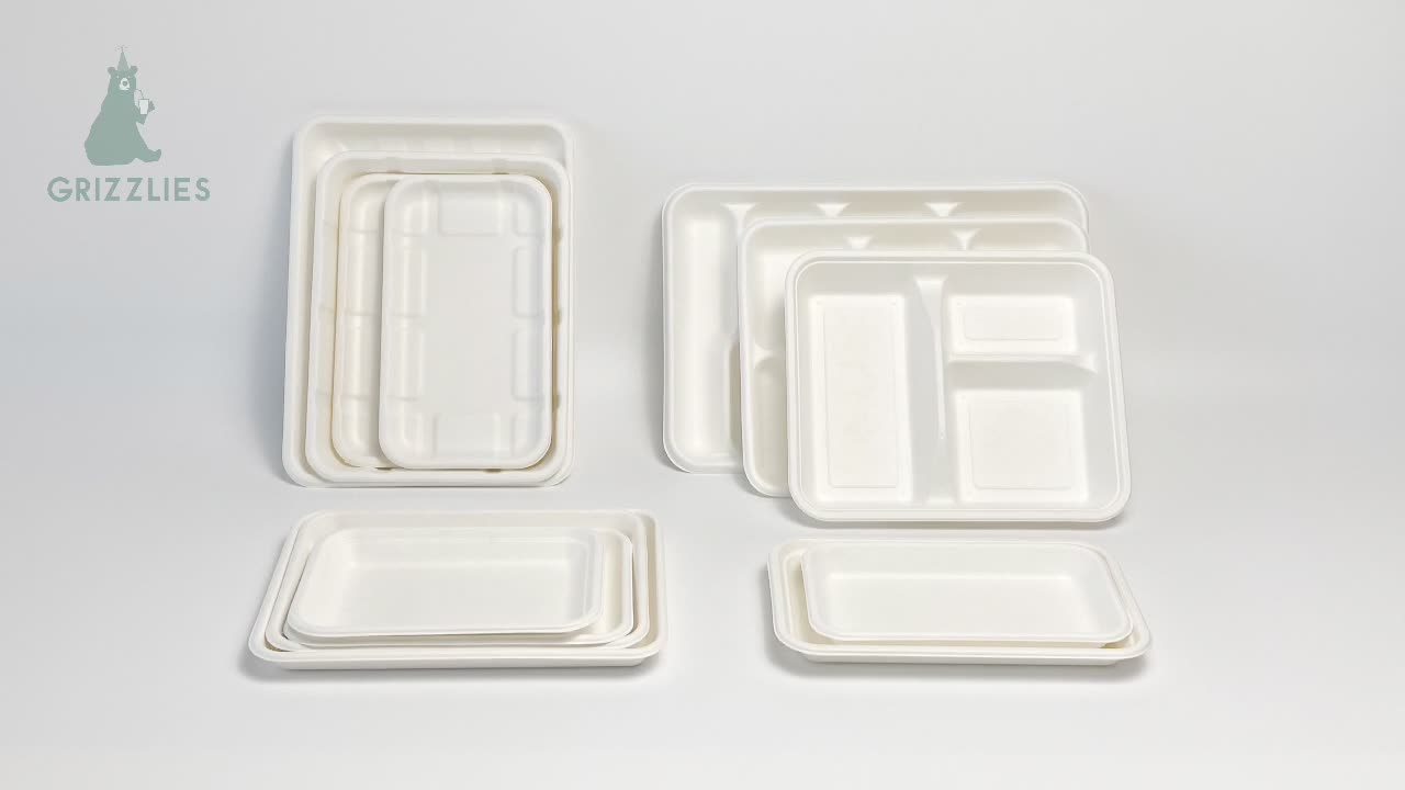 Heavy Duty Quality Disposable Bagasse 5-Compartment Biodegradable Lunch Tray