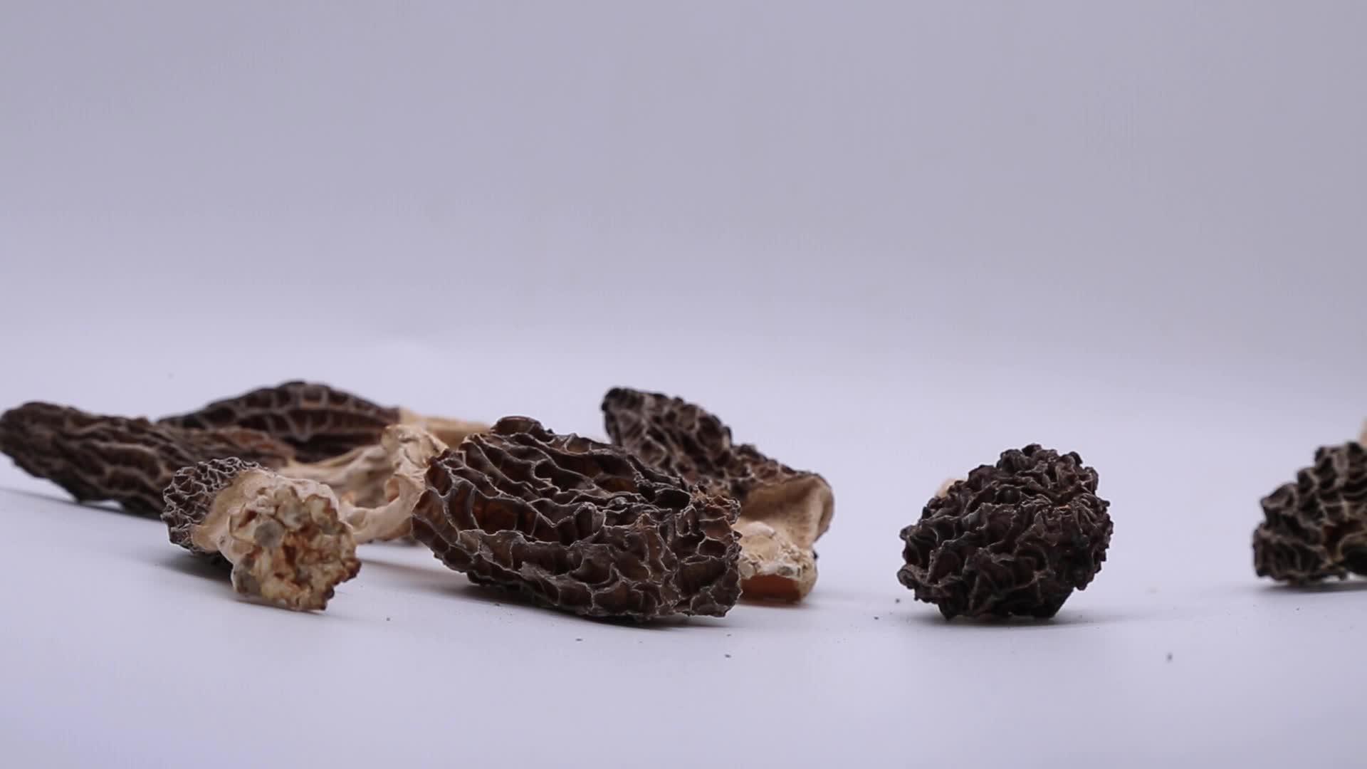 Selvagem Morchella Esculenta Secas Preto/Cogumelos Morel para Venda