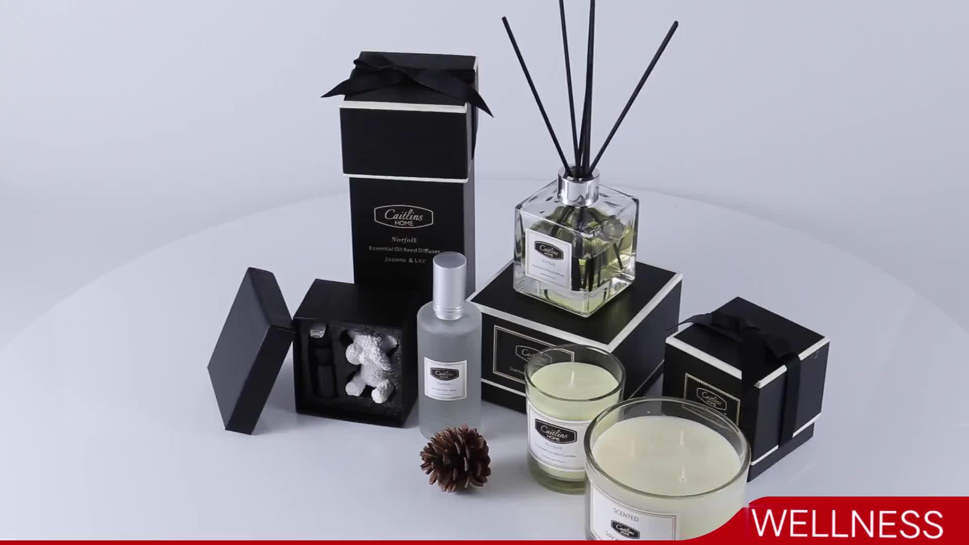 Reed diffusor mit natürlichen sticks für geschenk set