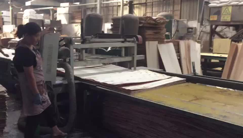 Complete Plywood production line and Plywood making machine for sale
