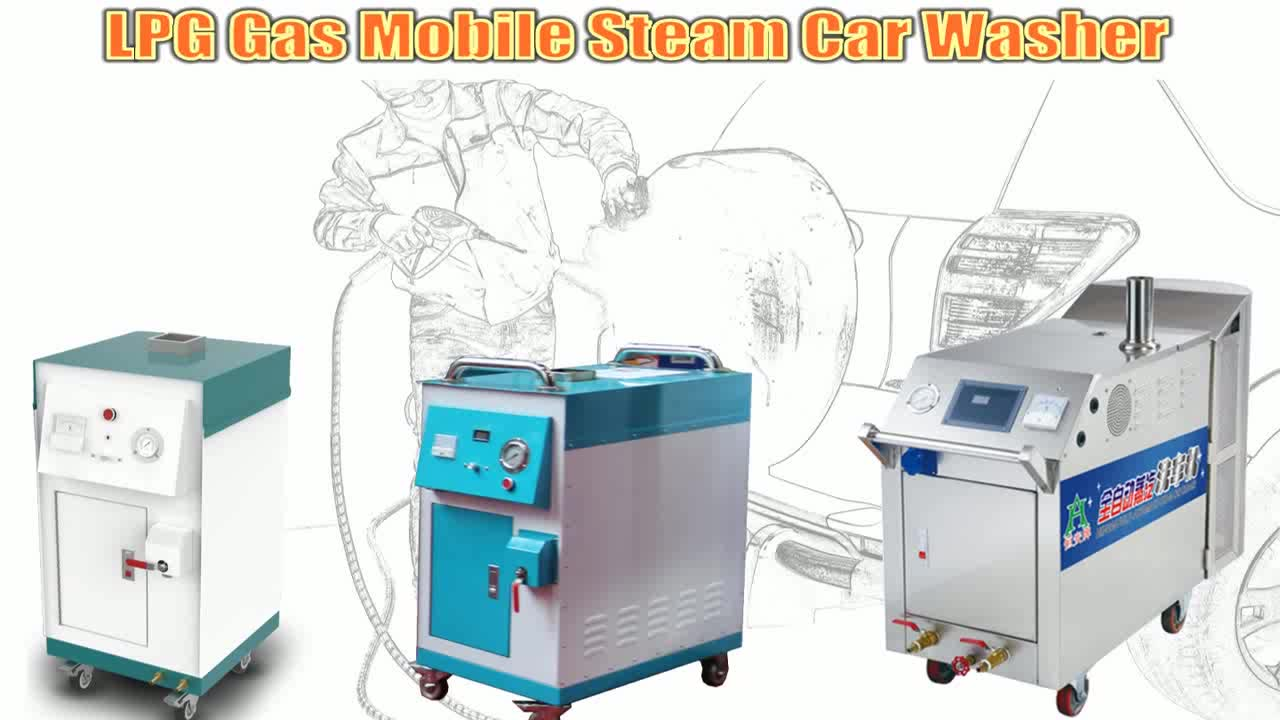 HF1160V Mobile Steam Vacuum Cleaner for Car Wash