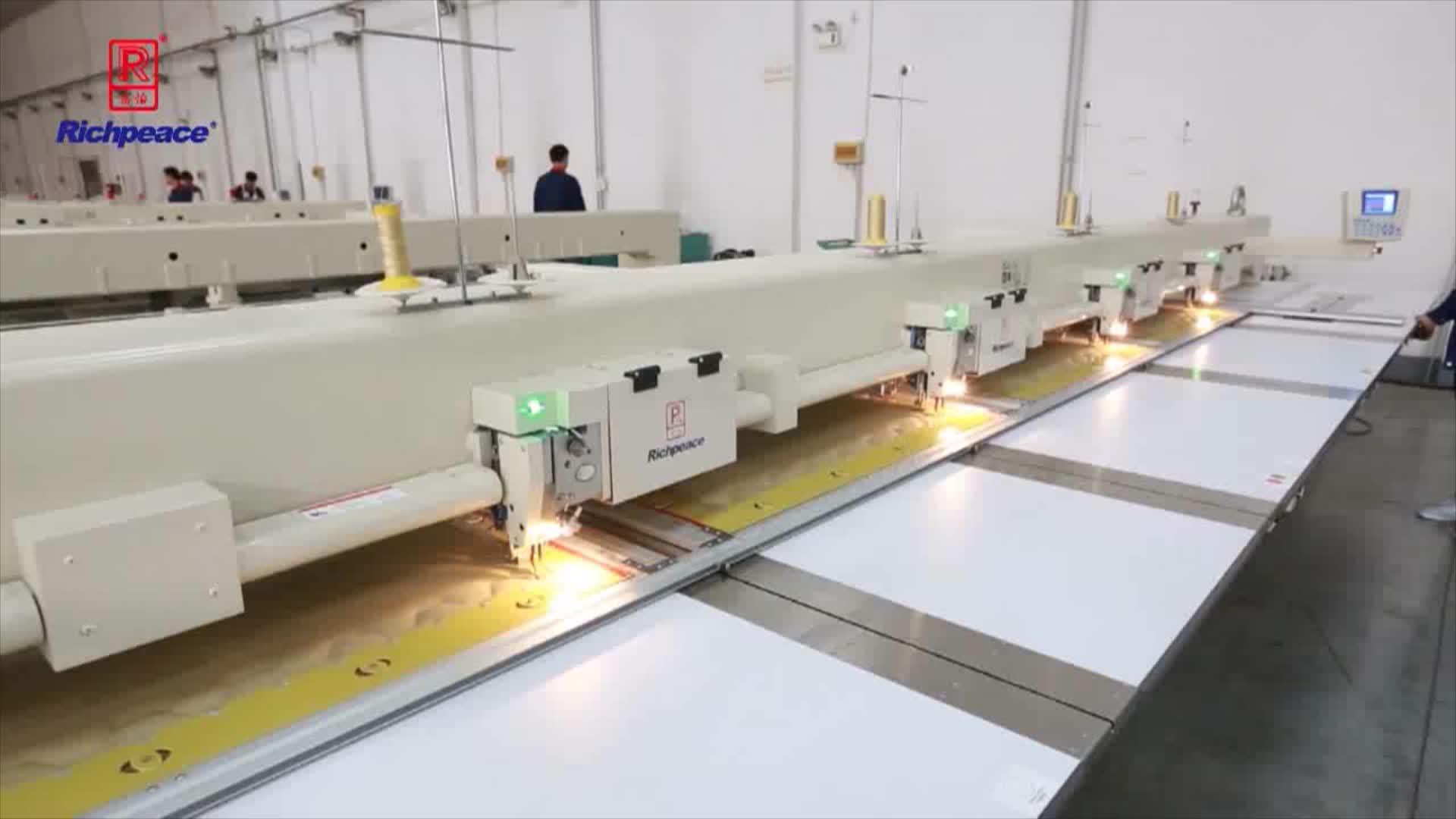 Richpeace Multi Hoofden Automatische Naaimachine voor Autostoel