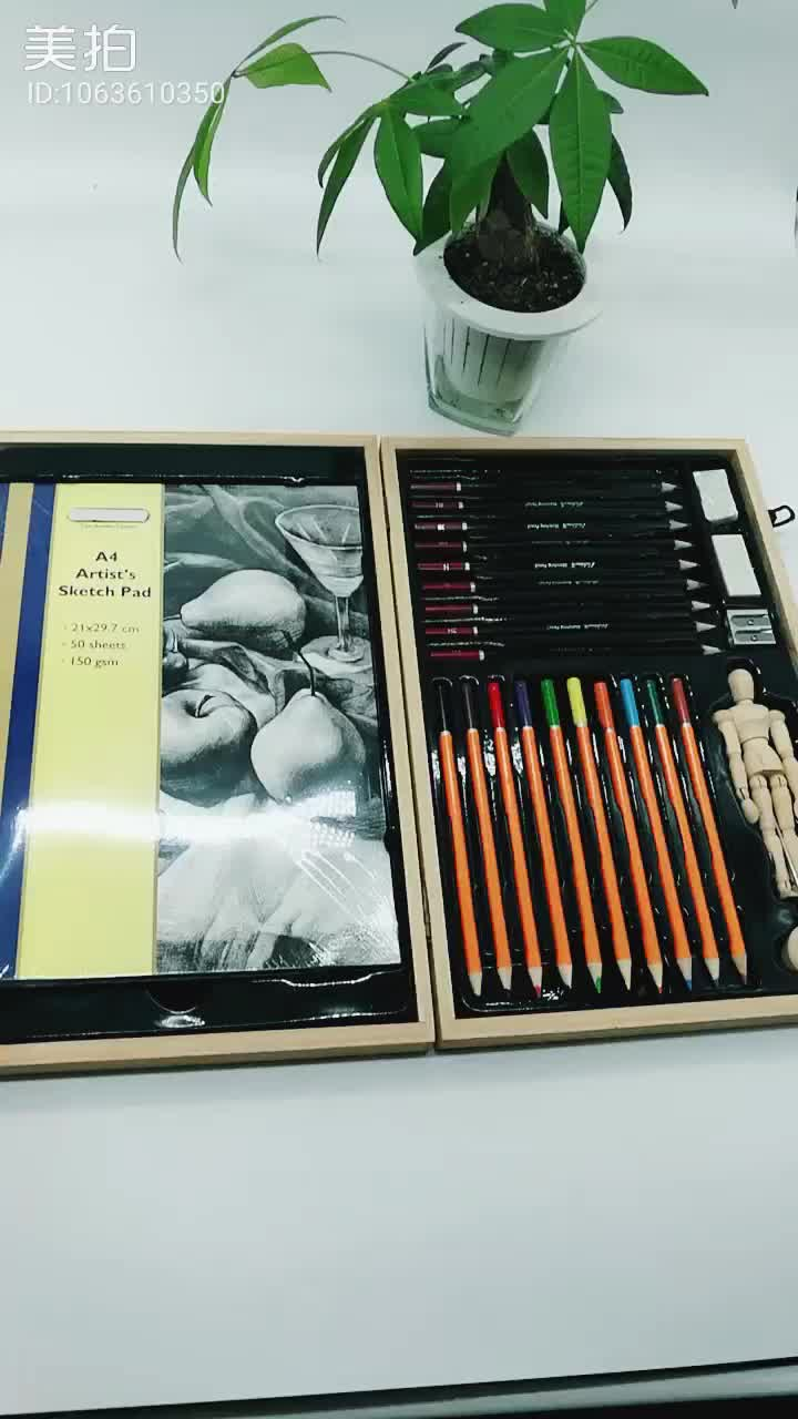 Disegno & schizzo a matita di arte set in cassa di legno per studenti e adulti