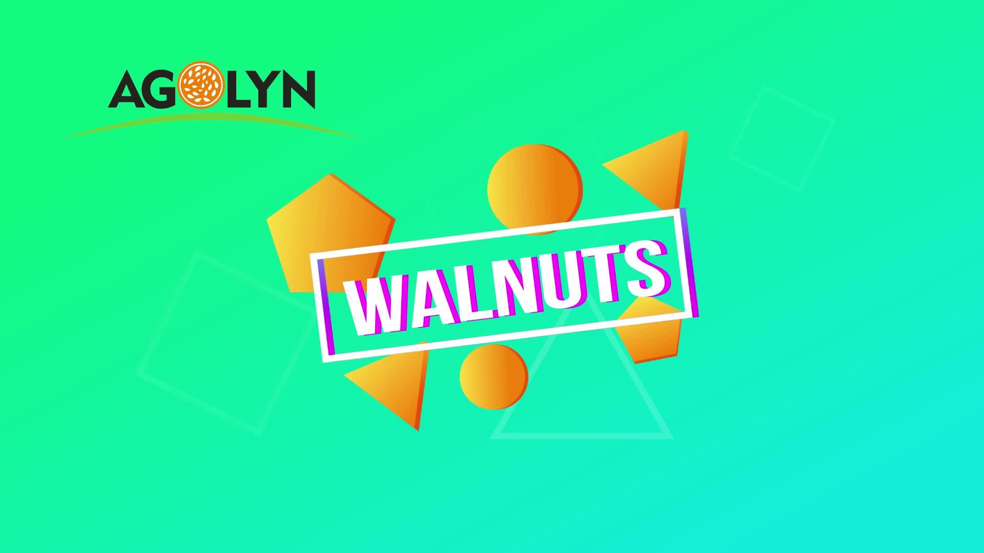 Agolyn paper shell fresh unbroken organic walnuts prices