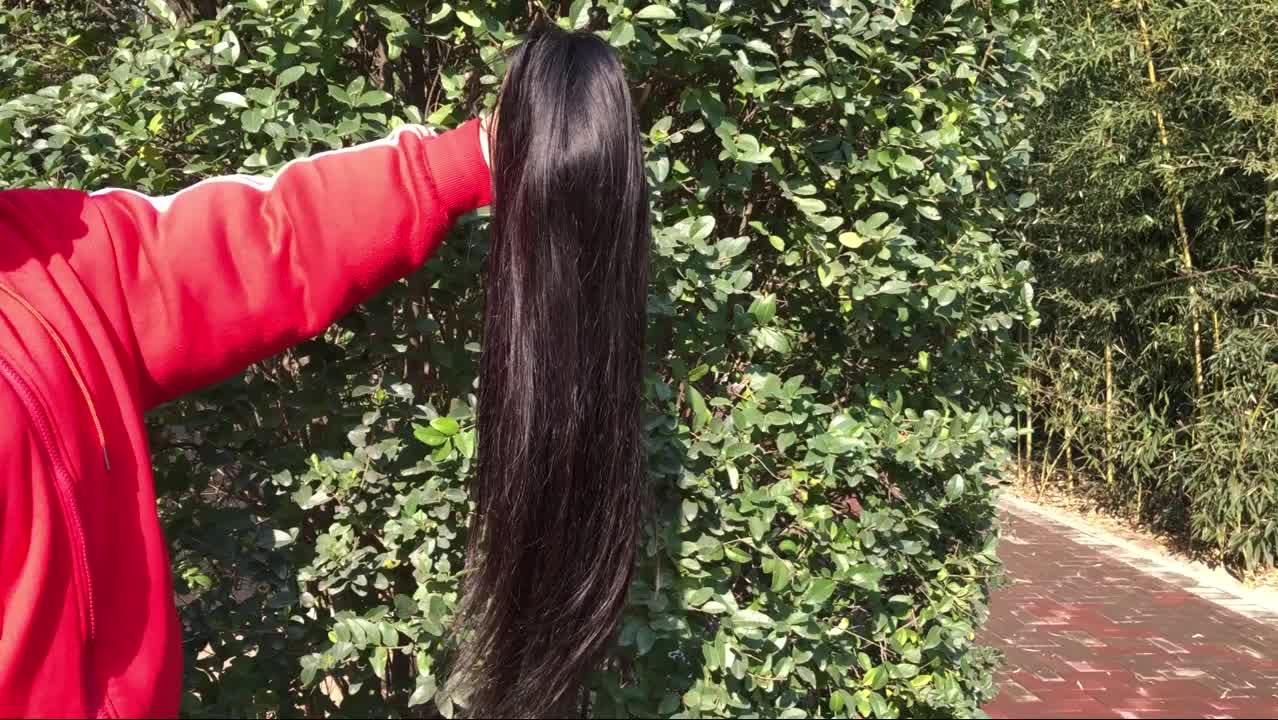 Cheap Human Hair Lace Front Wig,Brazilian Hair Lace Front Wigs Human Hair,Afro Wigs Straight Wave Lace Frontal Wig