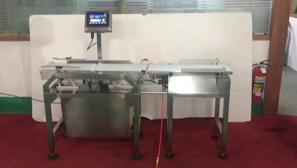 Automatic online dynamic high precision check weigher for food industry