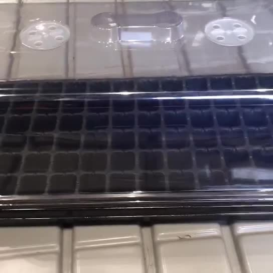 Plastic plant propagator seed trays kit seedling starter germination tray with lid