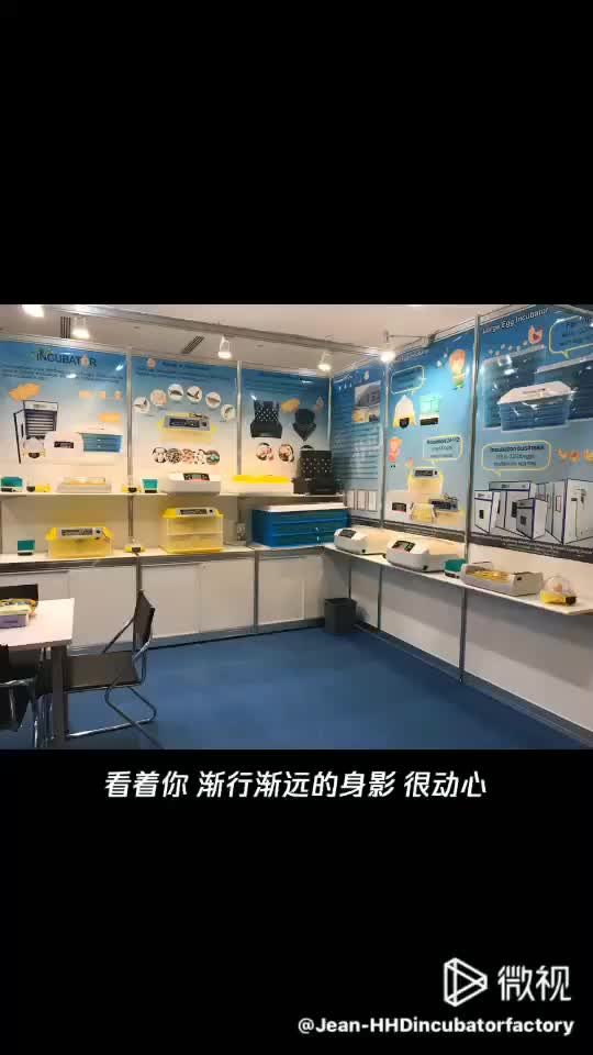 HHD Brand quick shipment full automatic poultry used mini hatchery egg incubator with free spare parts