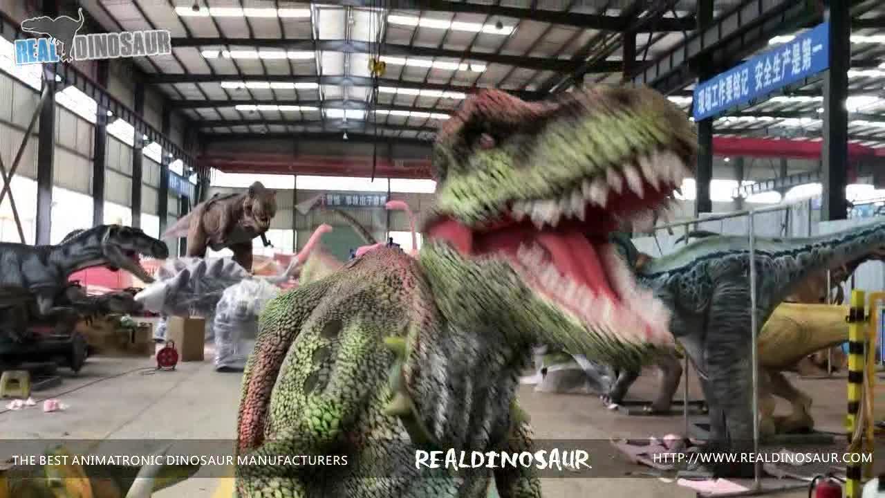 RDC-064 Hand Control Animatronic Tyrannosaurus Rex เครื่องแต่งกายไดโนเสาร์เครื่องแต่งกายสำหรับขาย