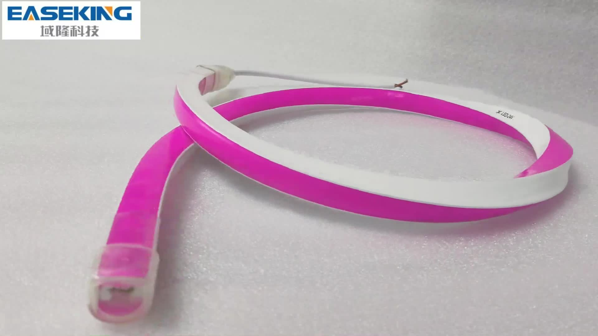 Pacer flexible light strip with reverse