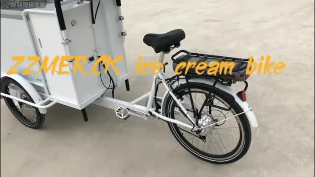 Cheap Price 250w 36V 13A Pedal Assist Electric Tricycle Ice Cream Freezer Bike with Sink