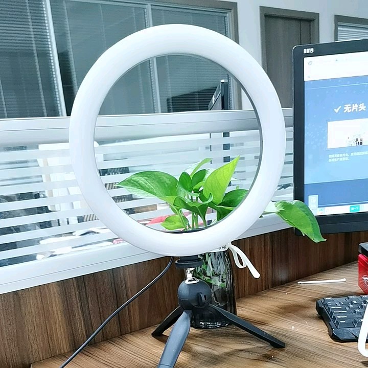 """LED Ring Light 6"""" with Tripod Stand for YouTube Video and Makeup, Mini LED Camera Light with Cell Phone Holder Desktop LED Light"""