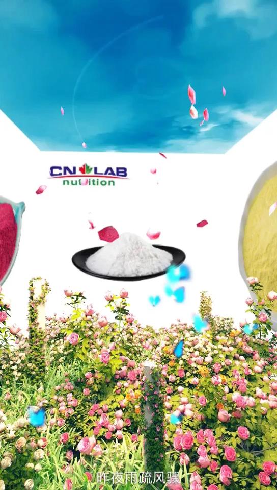 CN лабораторная поставка лучшее Королевское Желе с высоким качеством