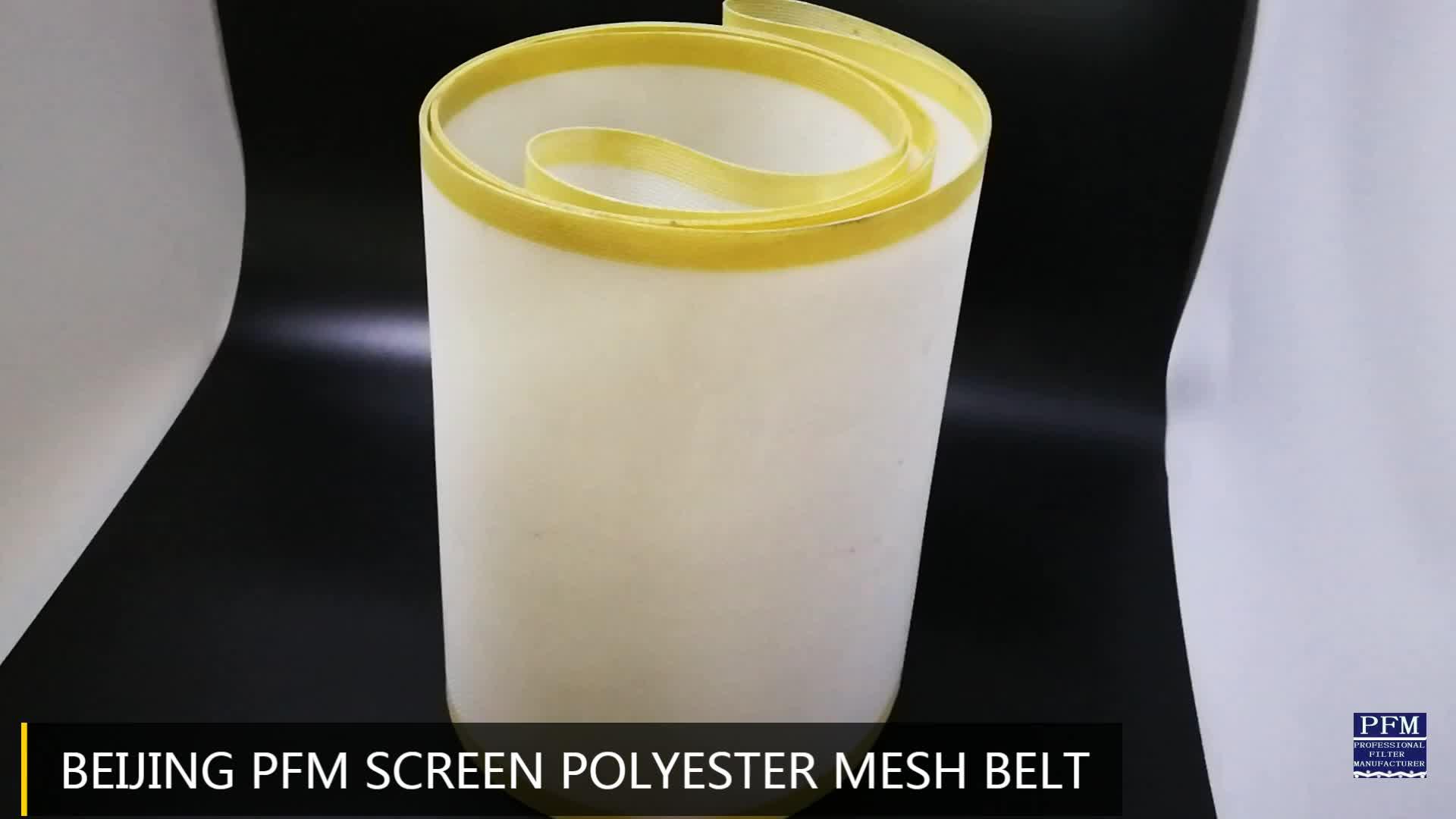 100% Poliéster Tecido Liso Tecido Cinto Tela Linear para fabricação De Papel