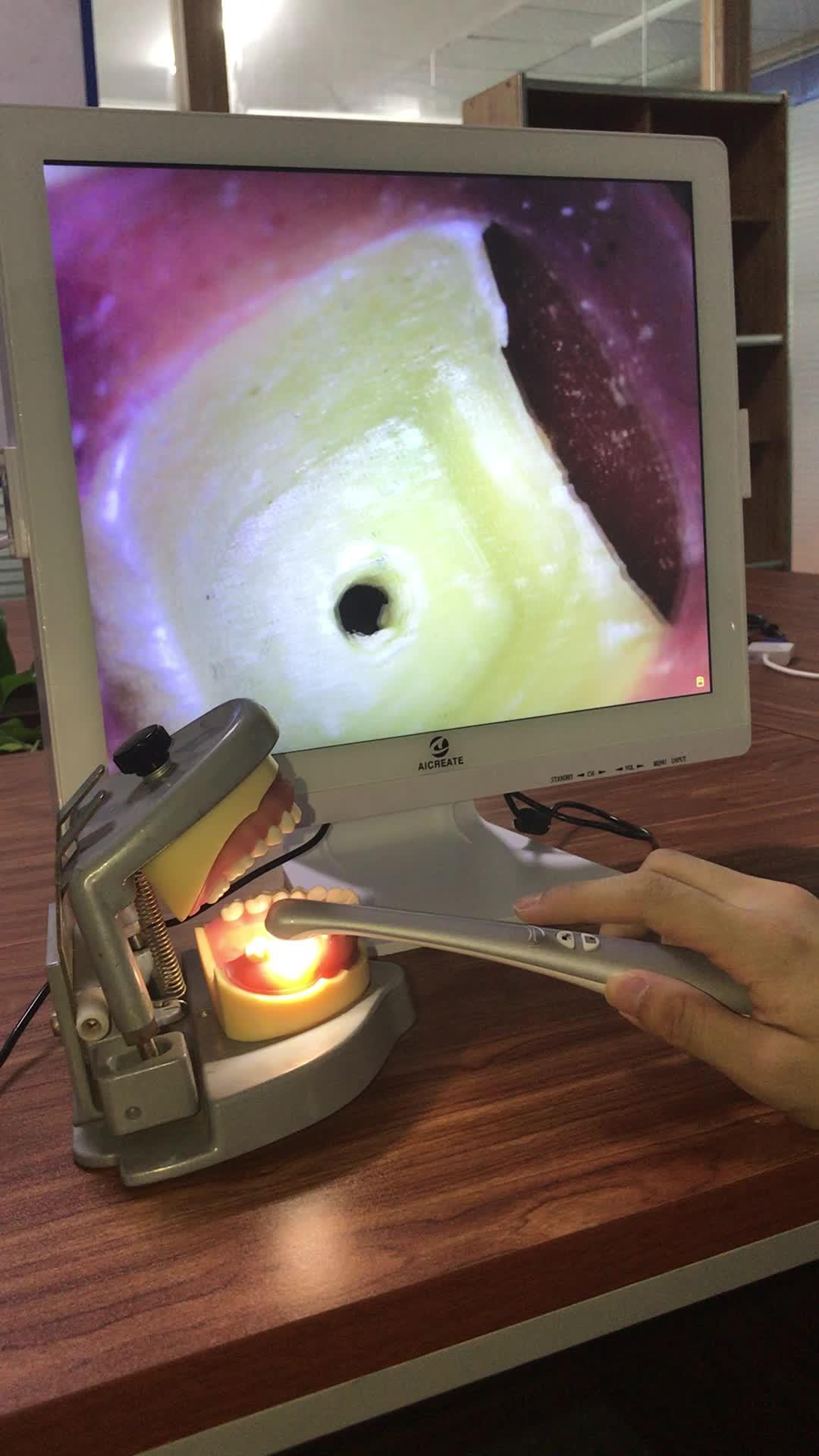 高品質歯カメラ歯科口腔内カメラ 1280*1024 17 インチモニター