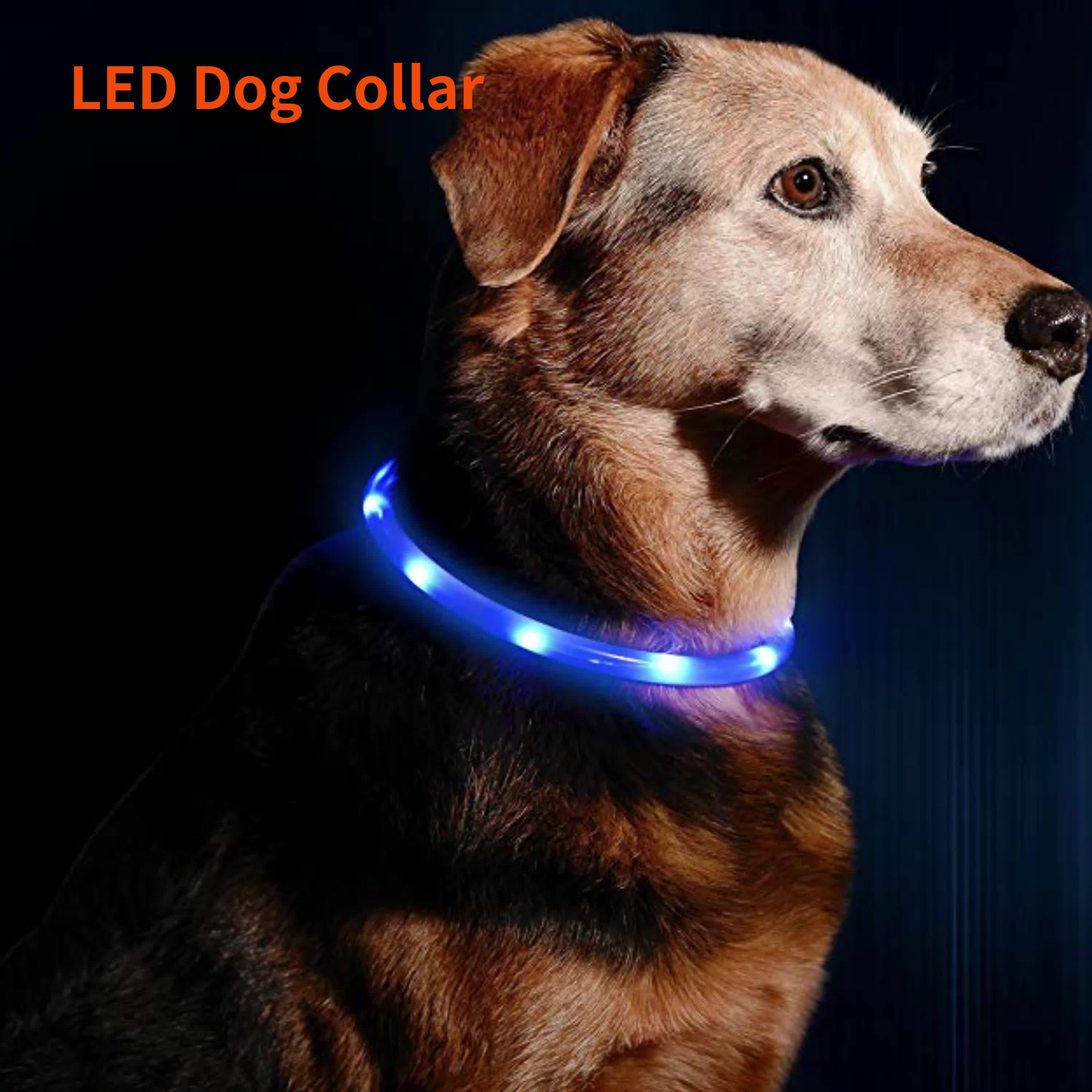 Waterproof LED USB Rechargeable Glowing Pet Silicone Dog Collar